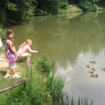 16.06.2018: Kinder schauen Entenfamilie zu